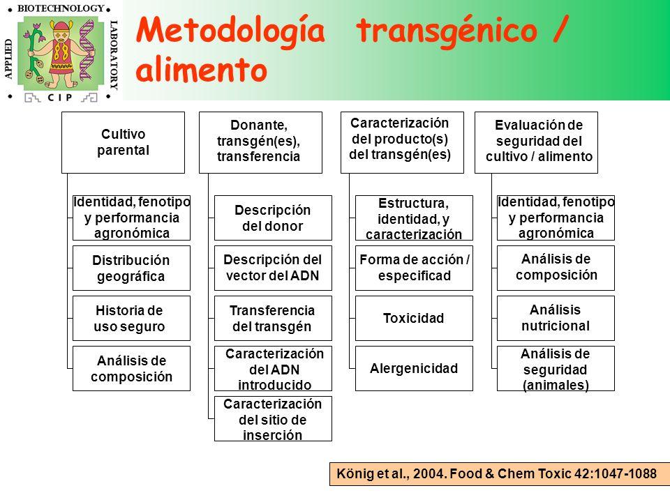 Metodología transgénico / alimento