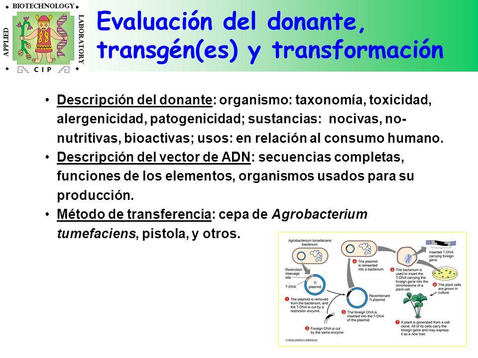 Evaluación del donante, transgén(es) y transformación