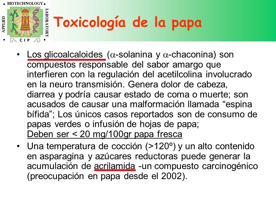 Toxicología de la papa