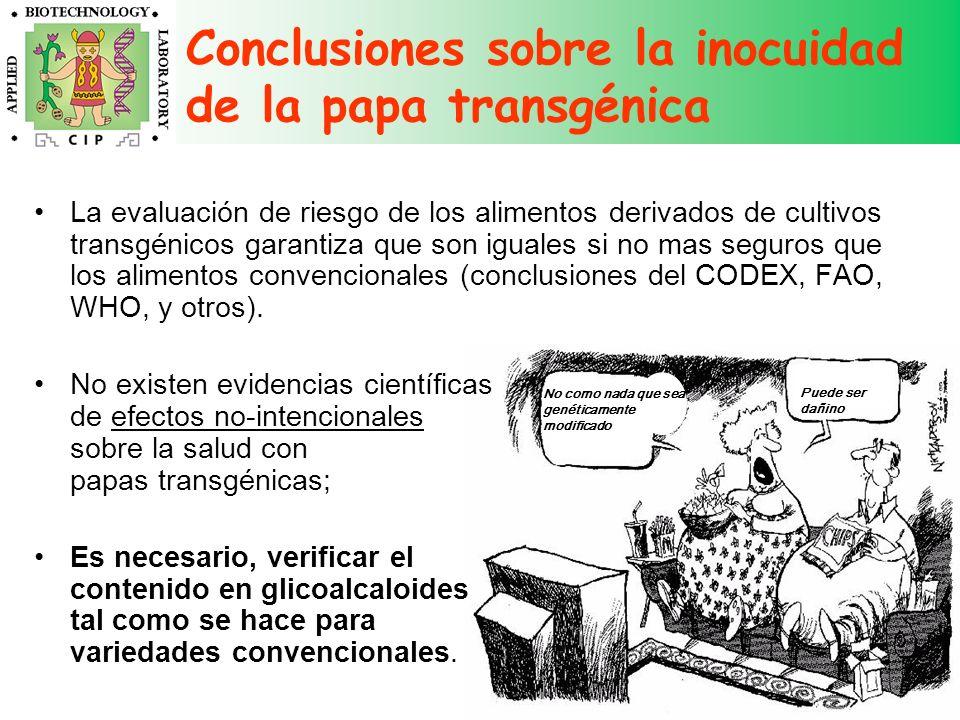 Conclusiones sobre la inocuidad de la papa transgénica