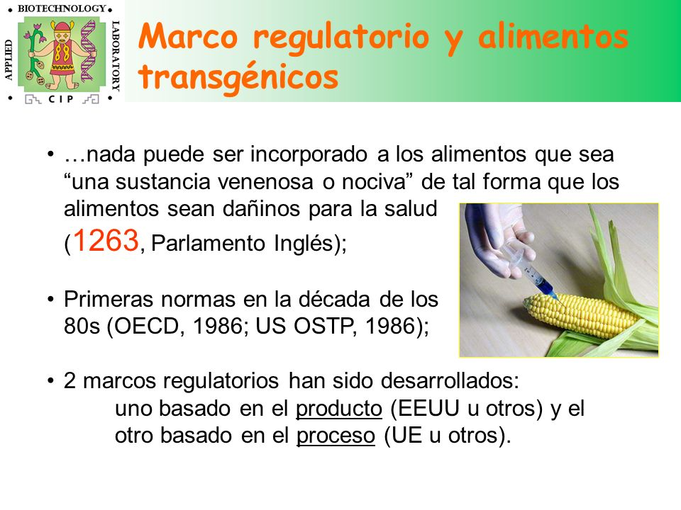 Marco regulatorio y alimentos transgénicos