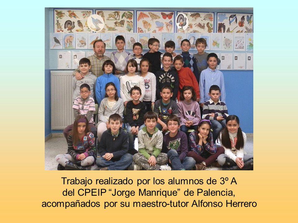 Trabajo realizado por los alumnos de 3º A del CPEIP Jorge Manrique de Palencia, acompañados por su maestro-tutor Alfonso Herrero