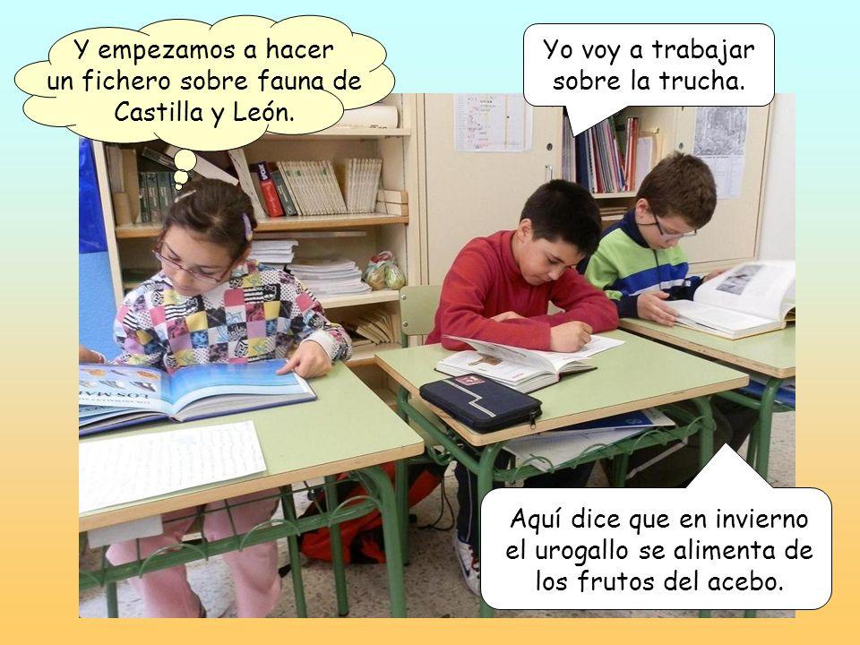 Y empezamos a hacer un fichero sobre fauna de Castilla y León.