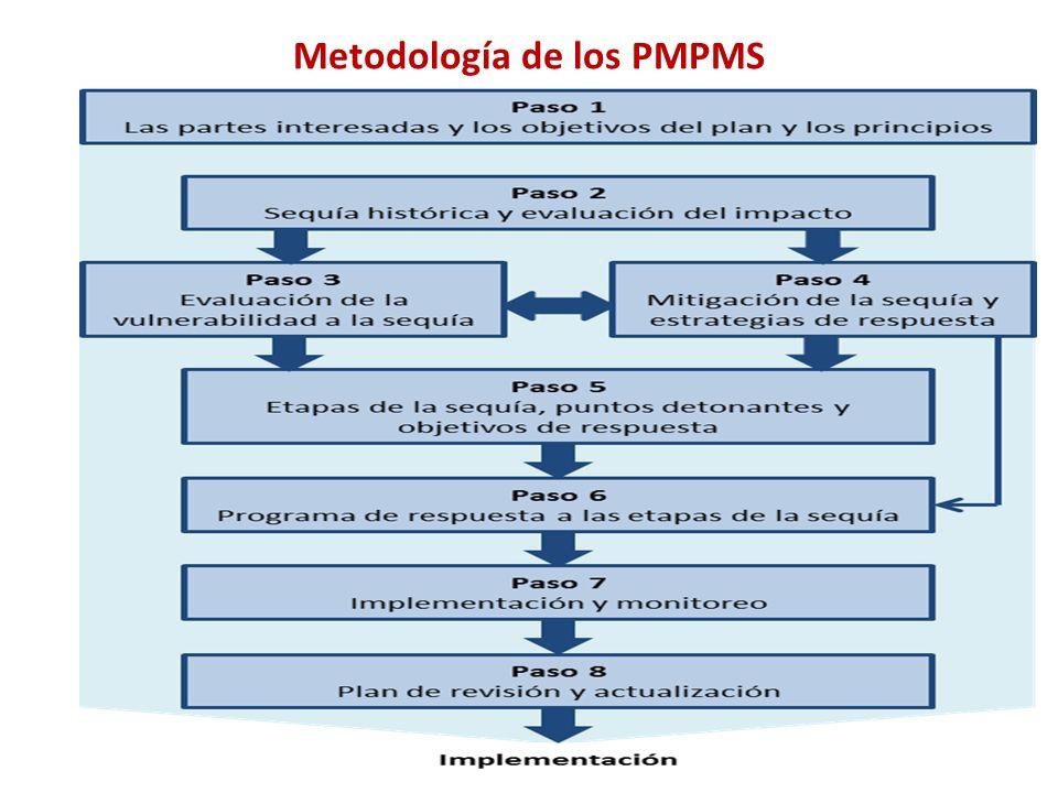 Metodología de los PMPMS