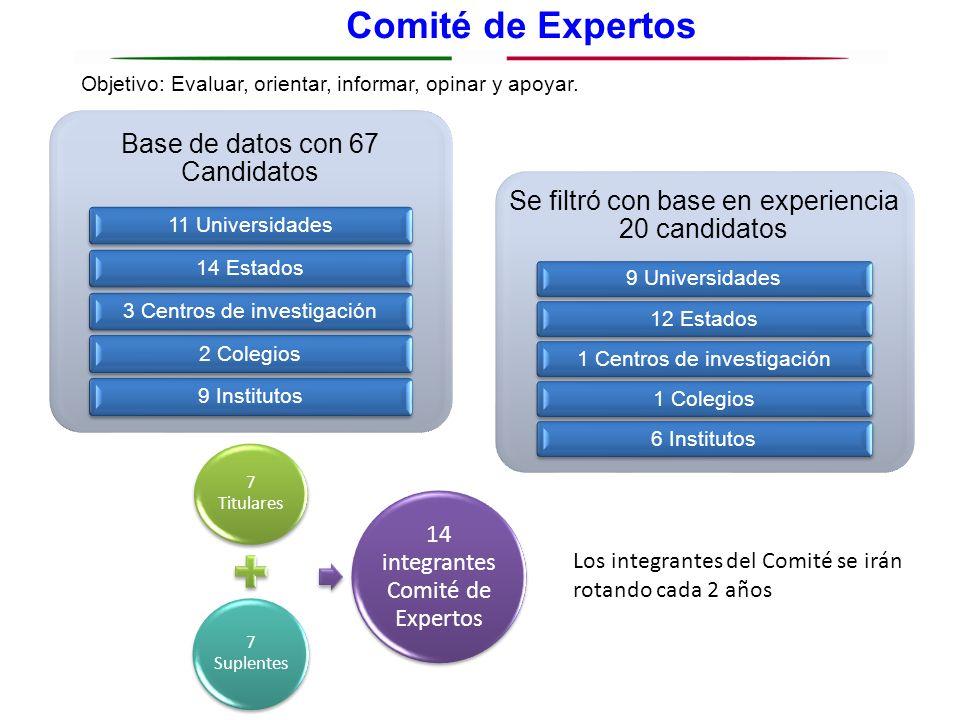 Comité de Expertos Base de datos con 67 Candidatos