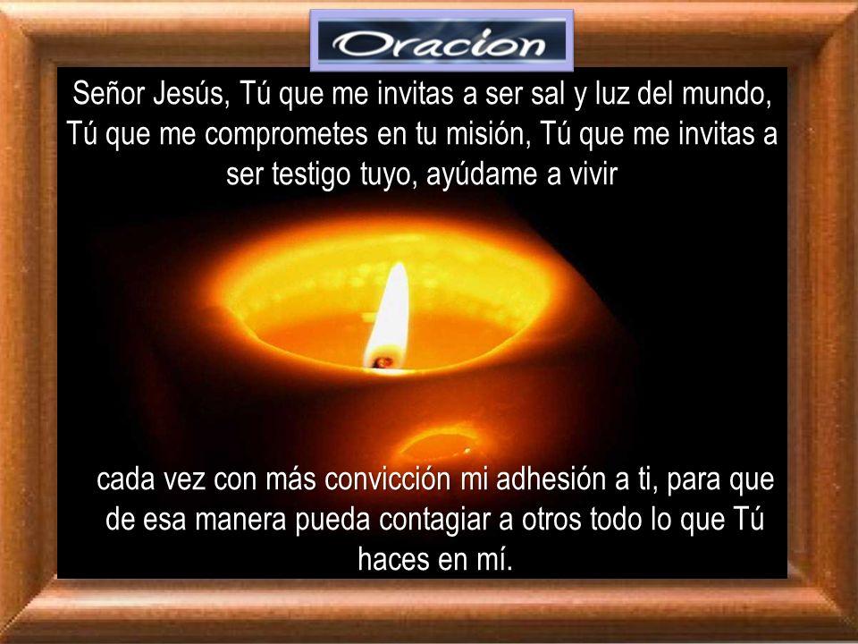 Señor Jesús, Tú que me invitas a ser sal y luz del mundo, Tú que me comprometes en tu misión, Tú que me invitas a ser testigo tuyo, ayúdame a vivir
