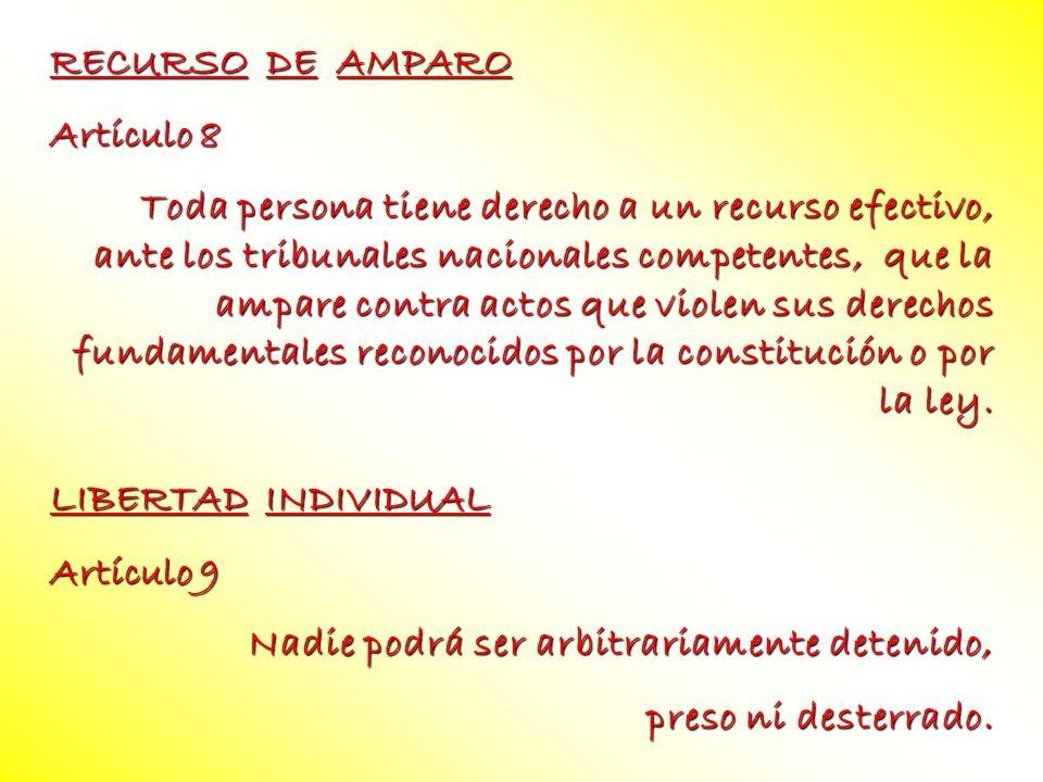 RECURSO DE AMPARO Artículo 8.