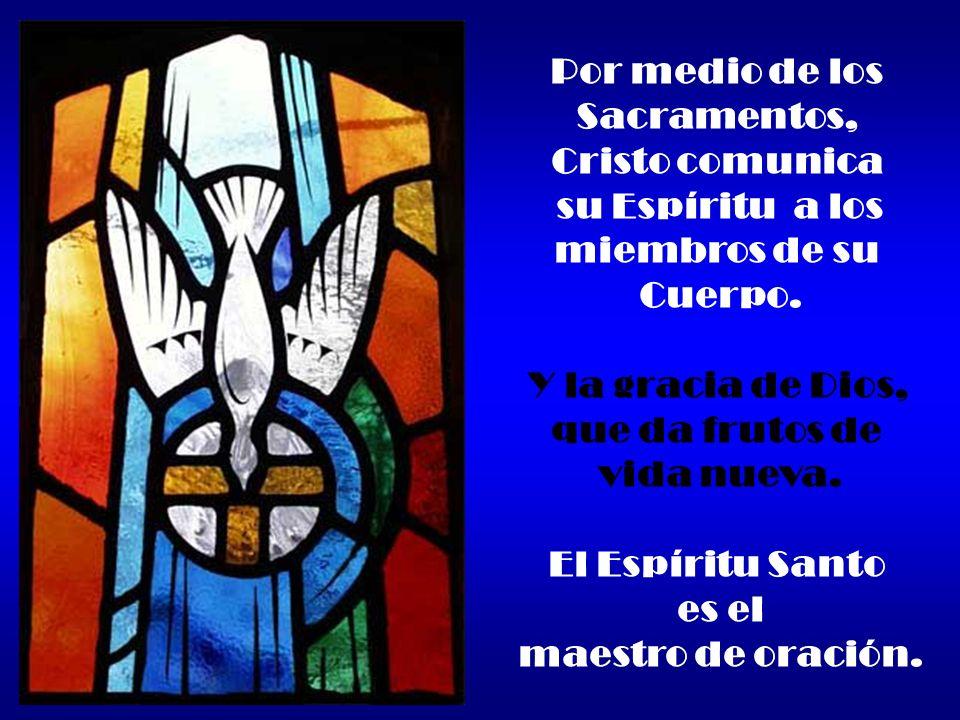 Por medio de los Sacramentos, Cristo comunica su Espíritu a los