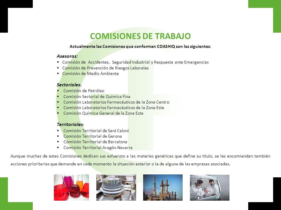 Actualmente las Comisiones que conforman COASHIQ son las siguientes: