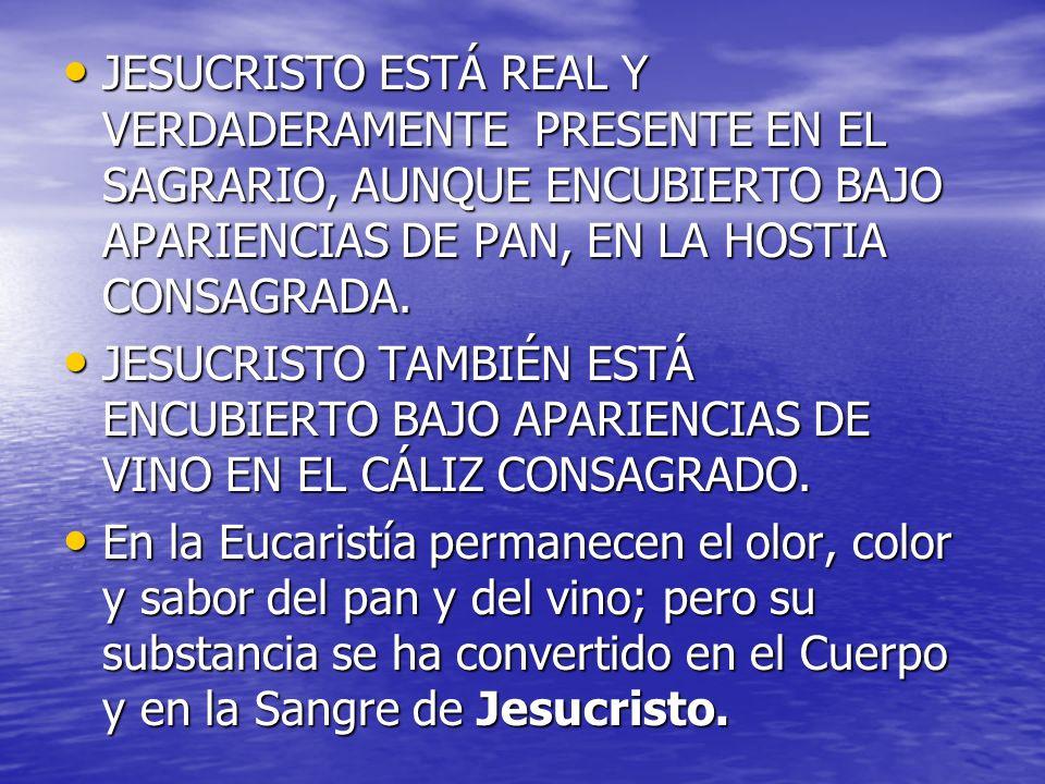 JESUCRISTO ESTÁ REAL Y VERDADERAMENTE PRESENTE EN EL SAGRARIO, AUNQUE ENCUBIERTO BAJO APARIENCIAS DE PAN, EN LA HOSTIA CONSAGRADA.