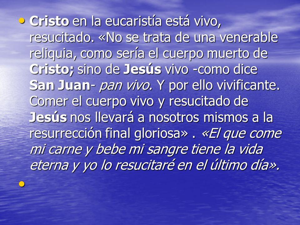 Cristo en la eucaristía está vivo, resucitado