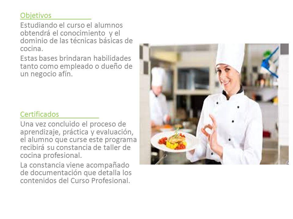 Introducci n a la cocina profesional ppt descargar for Curso cocina profesional pdf
