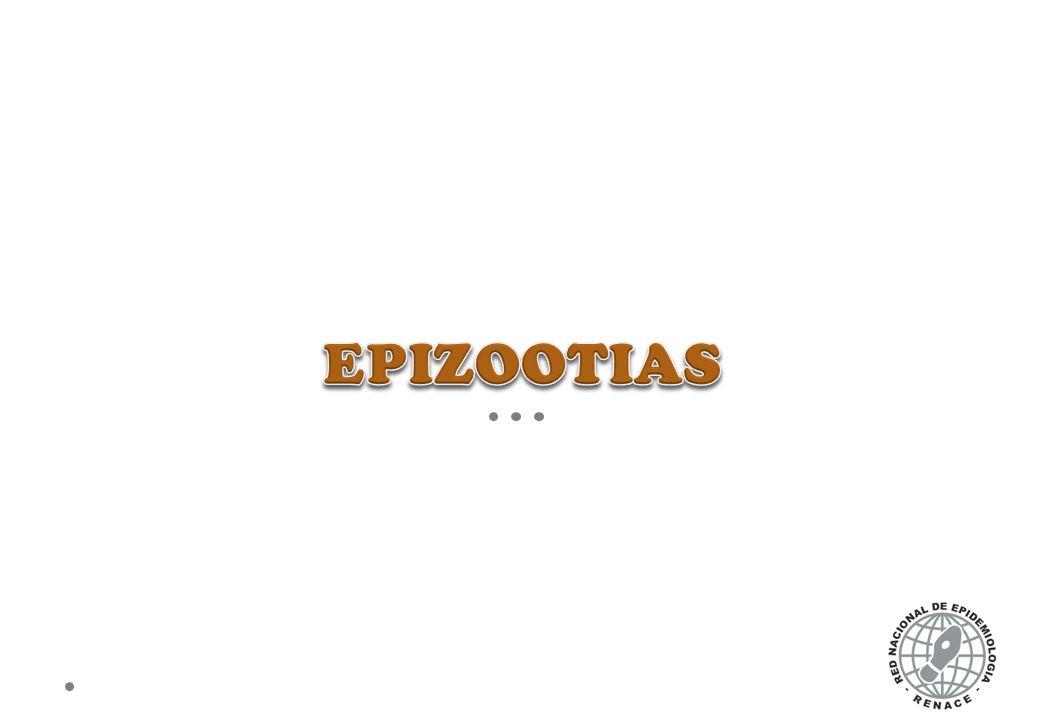 EPIZOOTIAS