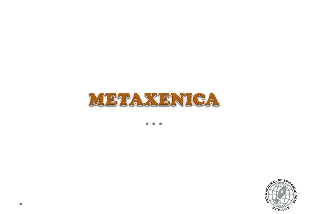METAXENICA