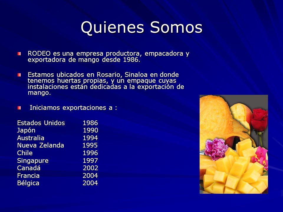 Quienes Somos RODEO es una empresa productora, empacadora y exportadora de mango desde 1986.