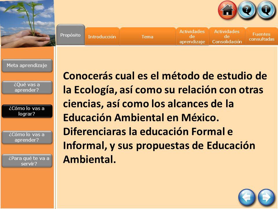 Propósito Introducción. Tema. Actividades de aprendizaje. Actividades de Consolidación. Fuentes.