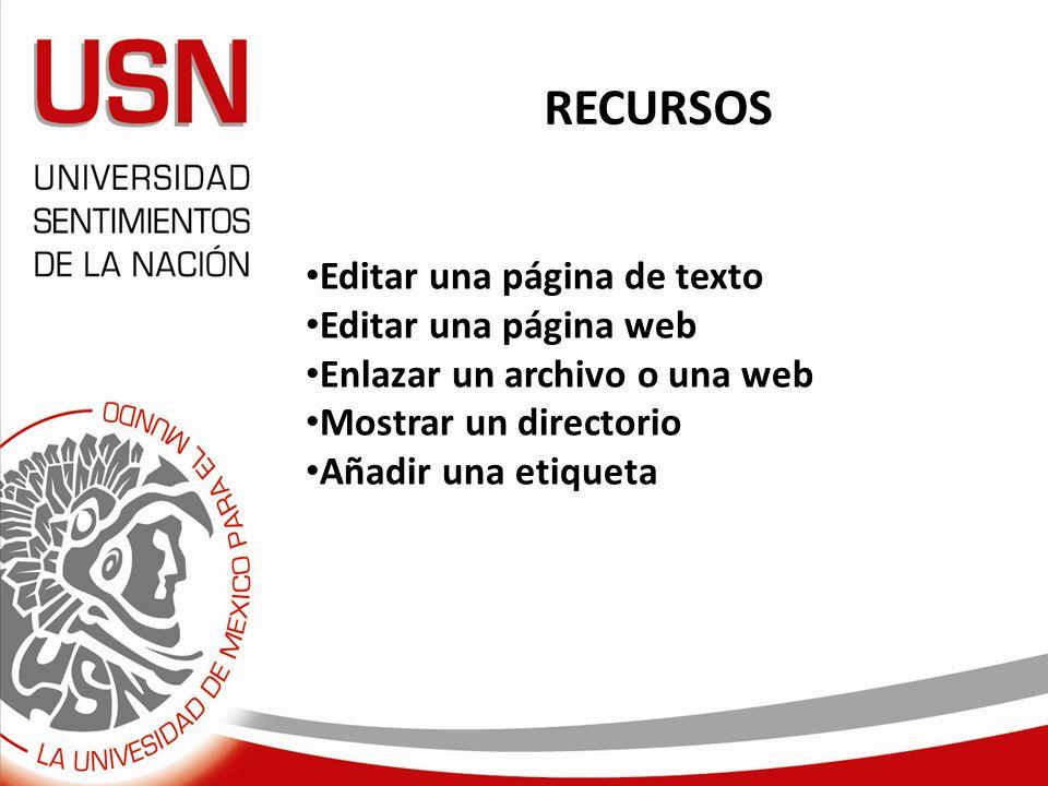 RECURSOS Editar una página de texto Editar una página web