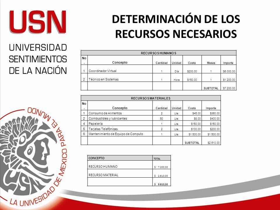 DETERMINACIÓN DE LOS RECURSOS NECESARIOS