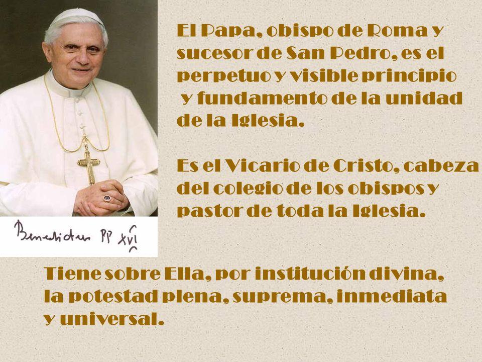 El Papa, obispo de Roma y sucesor de San Pedro, es el. perpetuo y visible principio. y fundamento de la unidad.