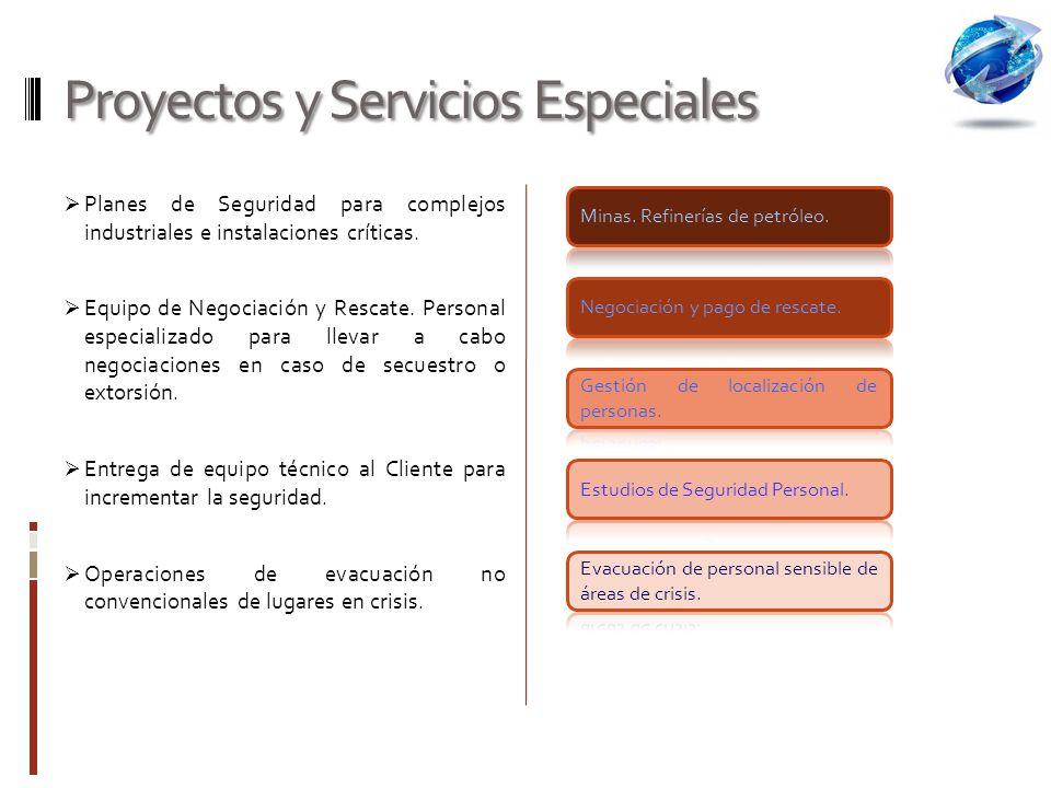 Proyectos y Servicios Especiales