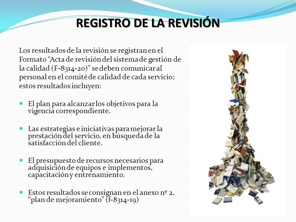 REGISTRO DE LA REVISIÓN