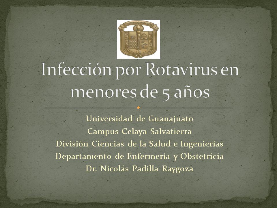 Infección por Rotavirus en menores de 5 años