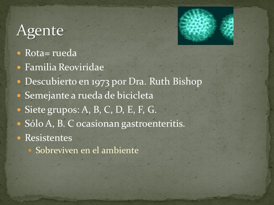 Agente Rota= rueda Familia Reoviridae