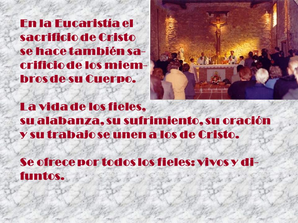 En la Eucaristía el sacrificio de Cristo. se hace también sa- crificio de los miem- bros de su Cuerpo.
