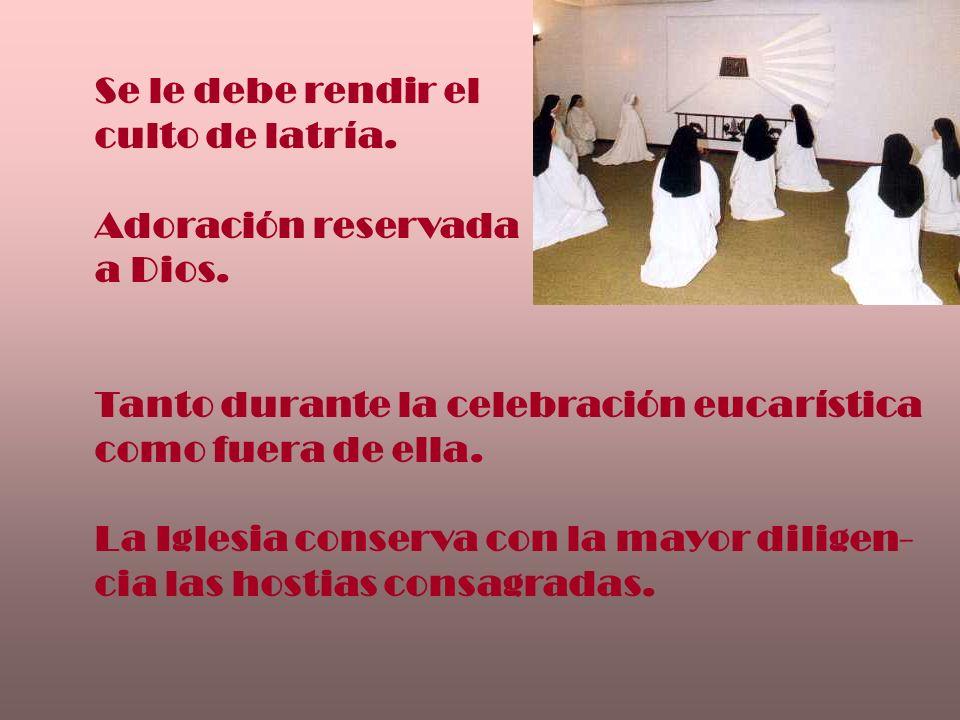 Se le debe rendir el culto de latría. Adoración reservada. a Dios. Tanto durante la celebración eucarística.
