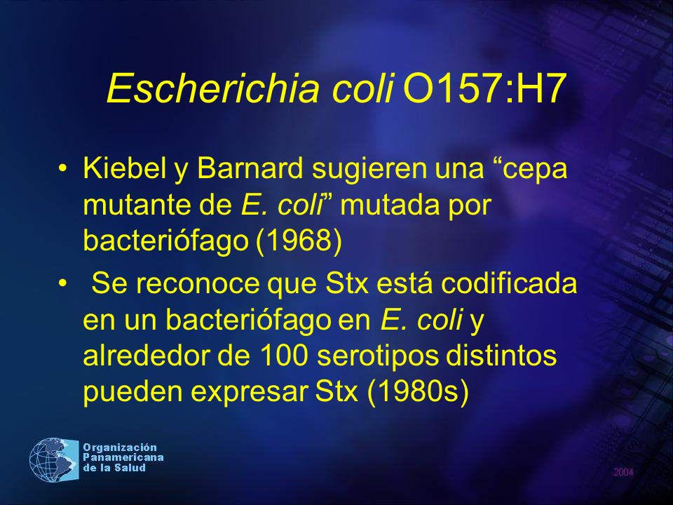 Escherichia coli O157:H7 Kiebel y Barnard sugieren una cepa mutante de E. coli mutada por bacteriófago (1968)