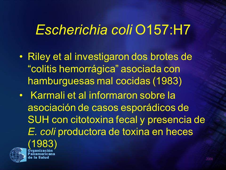 Escherichia coli O157:H7 Riley et al investigaron dos brotes de colitis hemorrágica asociada con hamburguesas mal cocidas (1983)