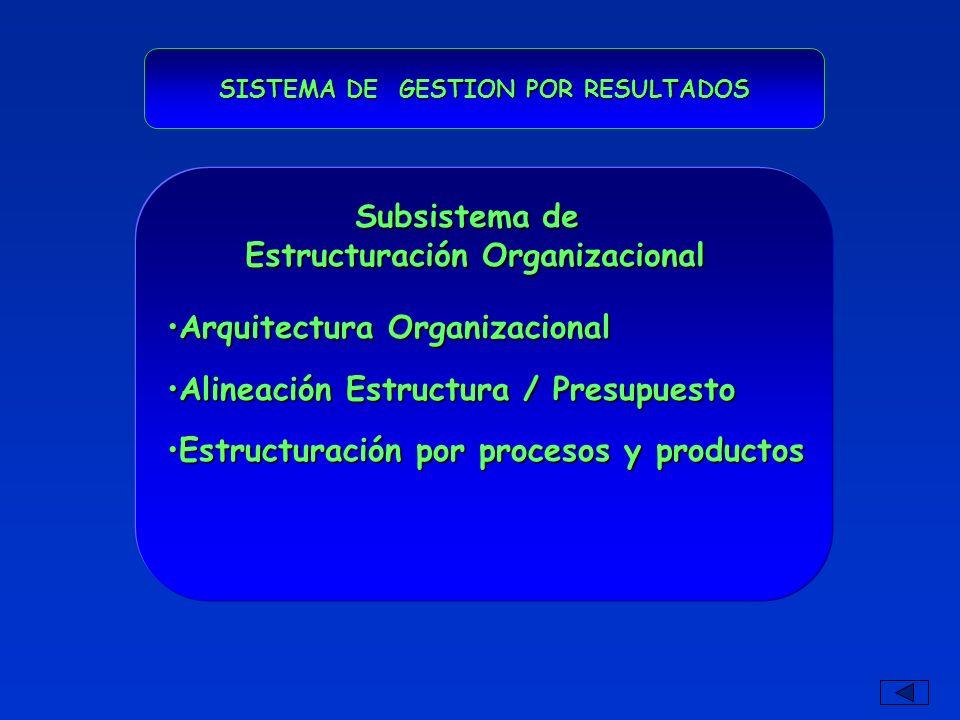 SISTEMA DE GESTION POR RESULTADOS Estructuración Organizacional