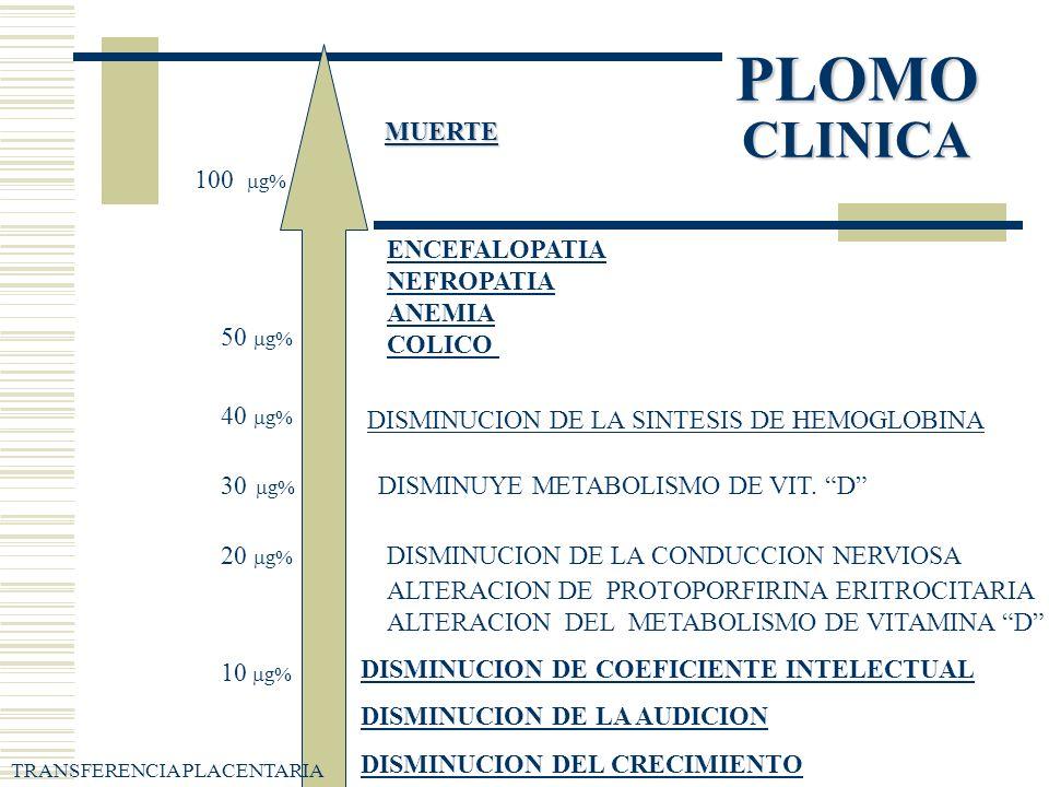 PLOMO CLINICA MUERTE 100 g% ENCEFALOPATIA NEFROPATIA ANEMIA COLICO