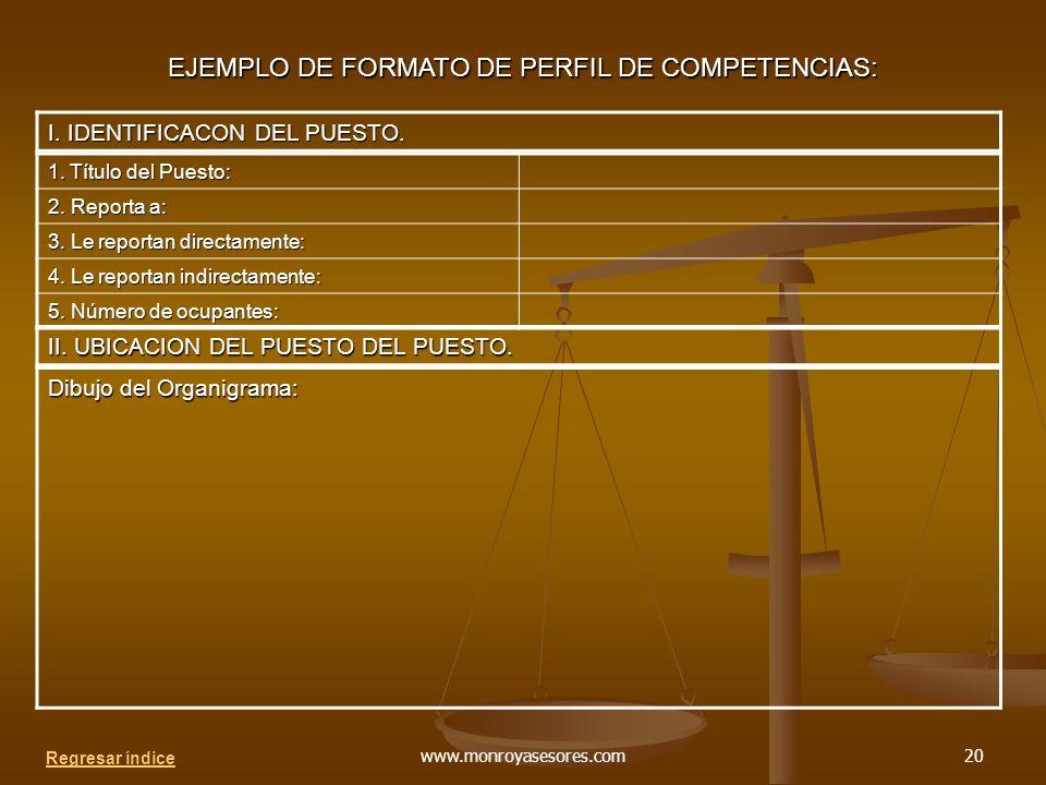 EJEMPLO DE FORMATO DE PERFIL DE COMPETENCIAS: