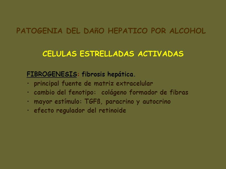 PATOGENIA DEL DAñO HEPATICO POR ALCOHOL CELULAS ESTRELLADAS ACTIVADAS