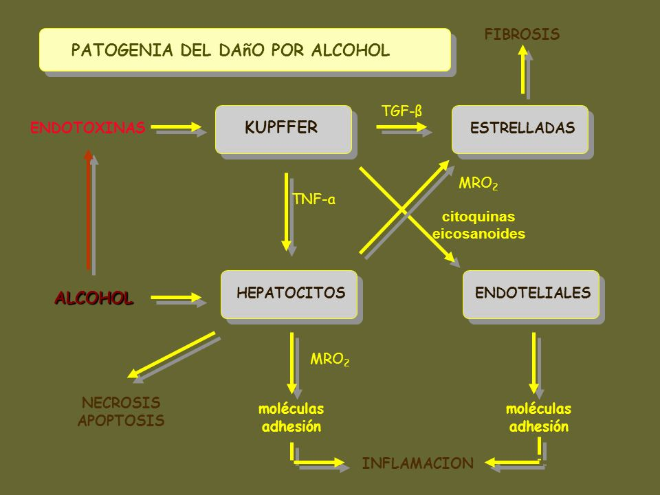 PATOGENIA DEL DAñO POR ALCOHOL
