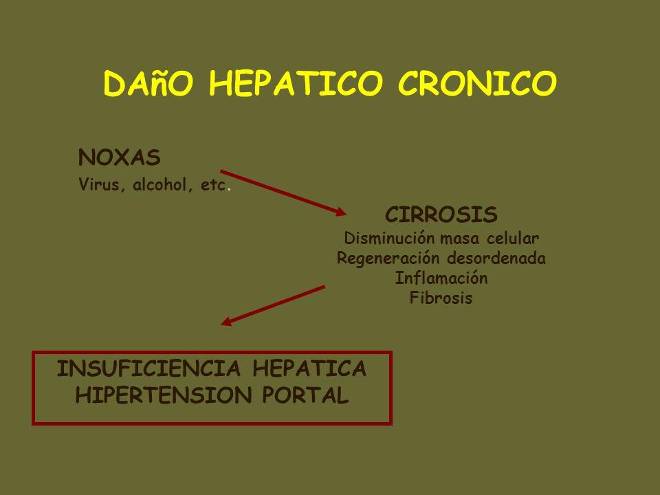 DAñO HEPATICO CRONICO NOXAS CIRROSIS INSUFICIENCIA HEPATICA