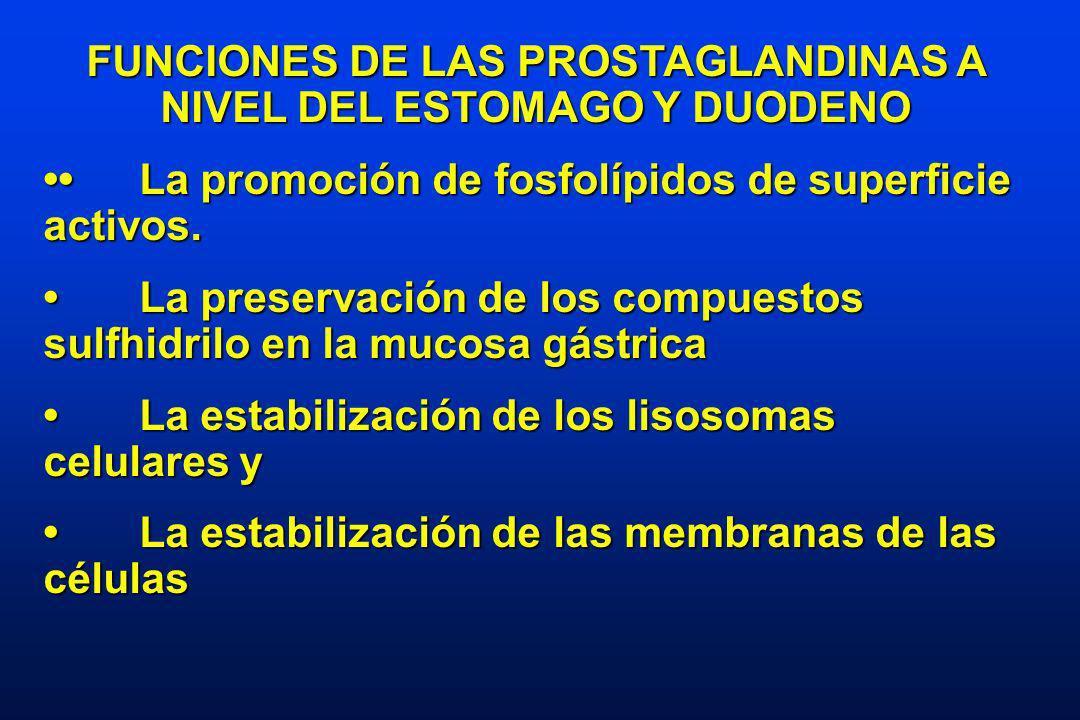 FUNCIONES DE LAS PROSTAGLANDINAS A NIVEL DEL ESTOMAGO Y DUODENO