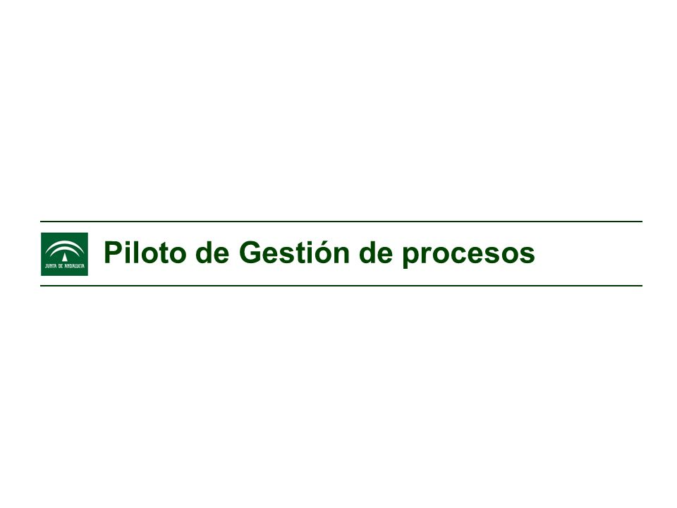Piloto de Gestión de procesos