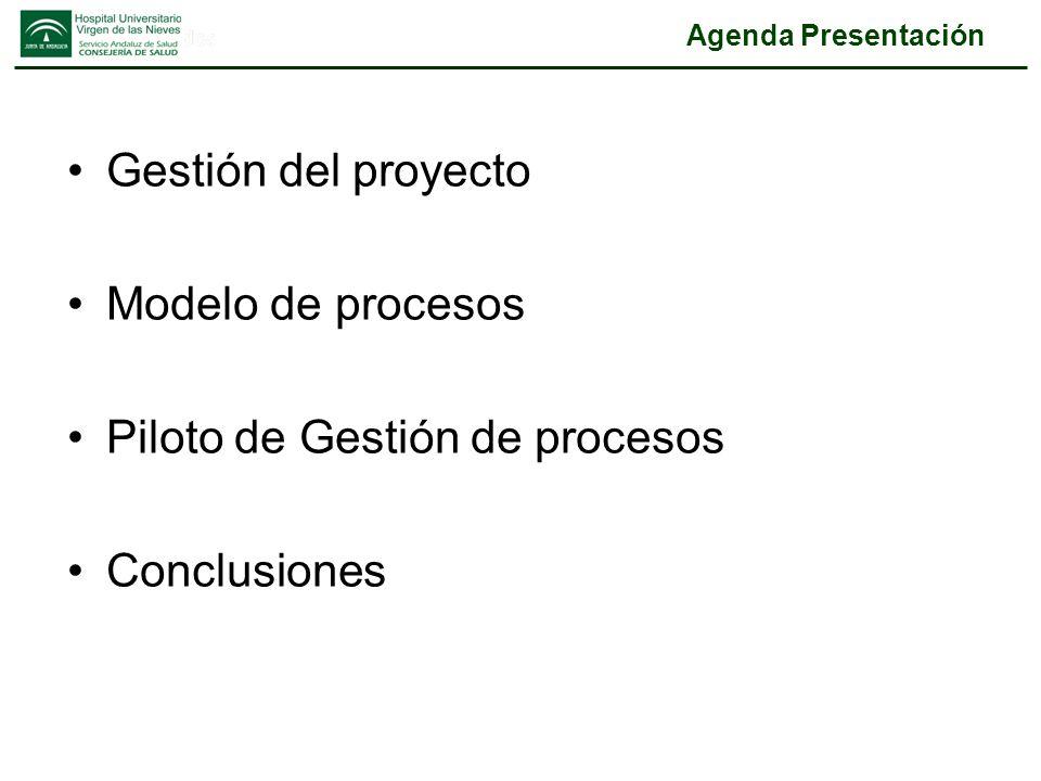 Piloto de Gestión de procesos Conclusiones