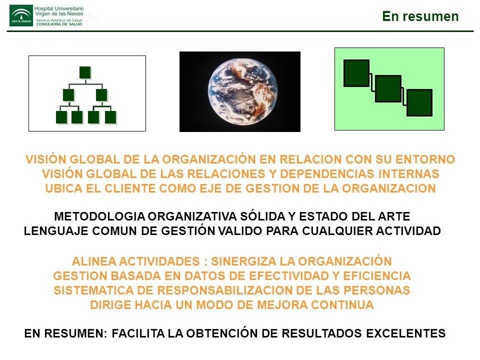 En resumen VISIÓN GLOBAL DE LA ORGANIZACIÓN EN RELACION CON SU ENTORNO