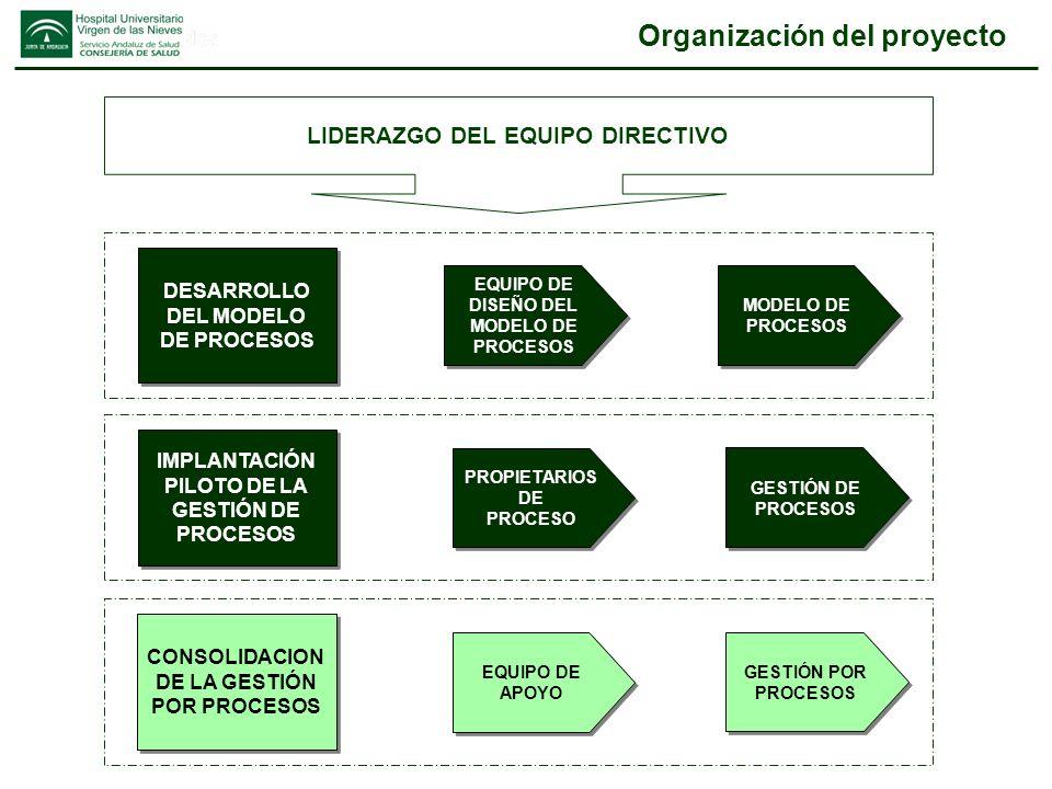 Organización del proyecto