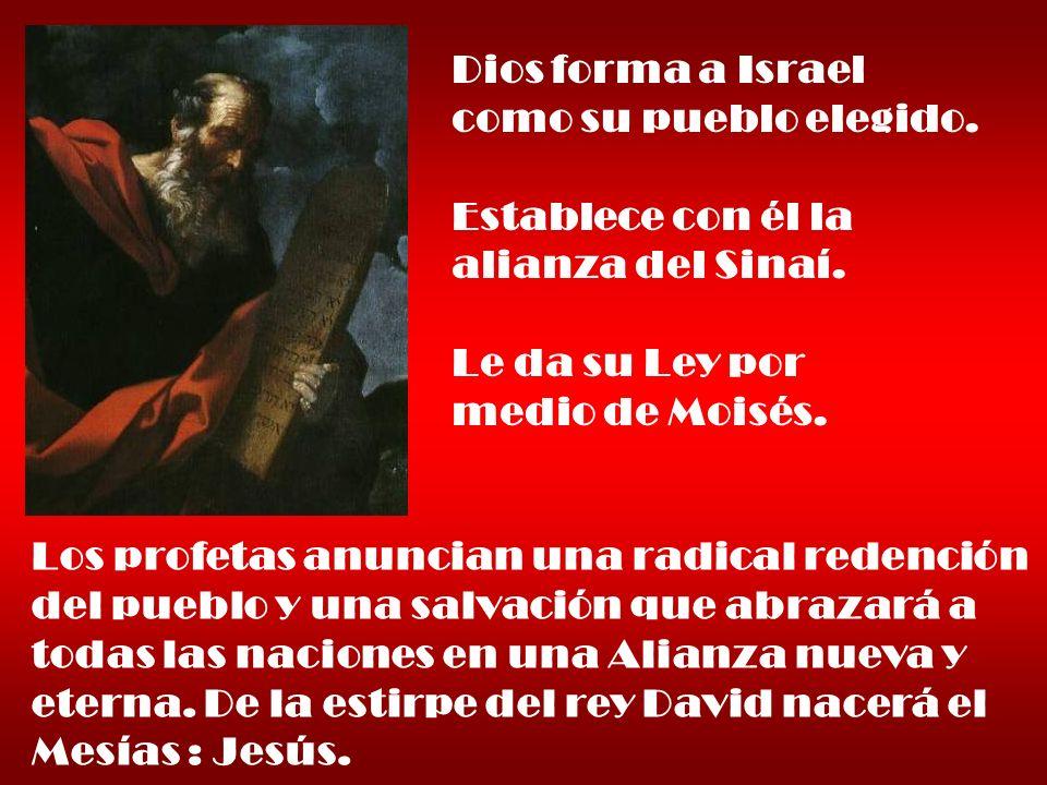 Dios forma a Israel como su pueblo elegido.