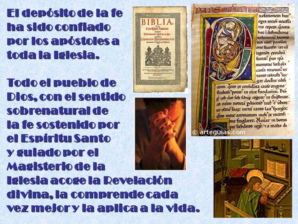 El depósito de la fe ha sido confiado. por los apóstoles a. toda la Iglesia. Todo el pueblo de. Dios, con el sentido.