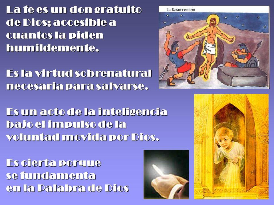 La fe es un don gratuito de Dios; accesible a cuantos la piden humildemente.