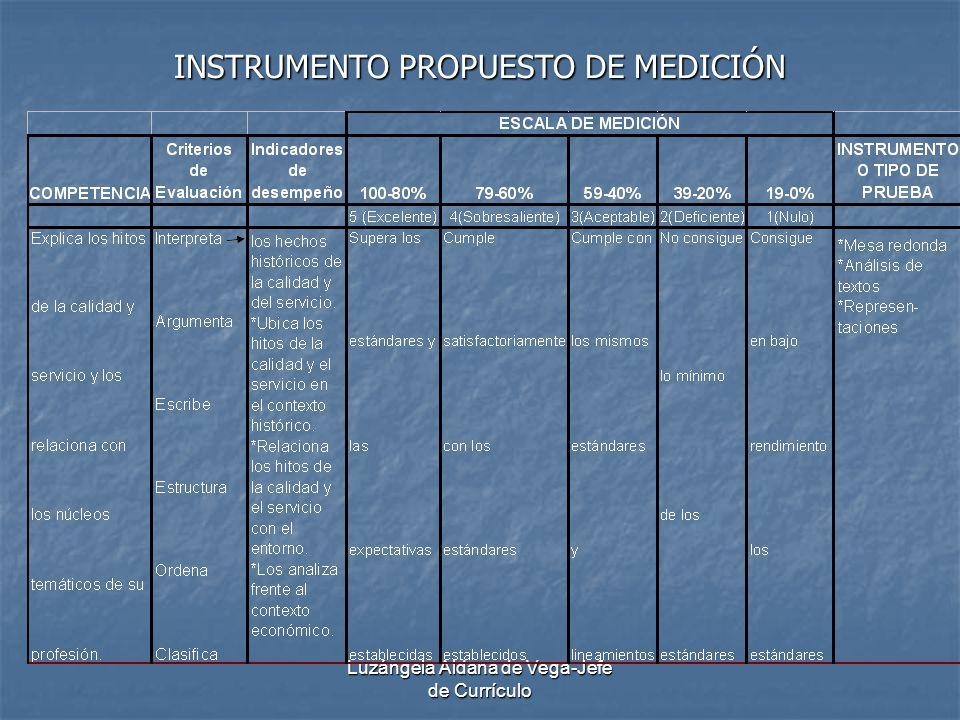 INSTRUMENTO PROPUESTO DE MEDICIÓN
