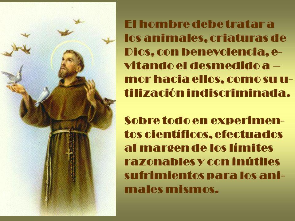 El hombre debe tratar a los animales, criaturas de. Dios, con benevolencia, e- vitando el desmedido a –