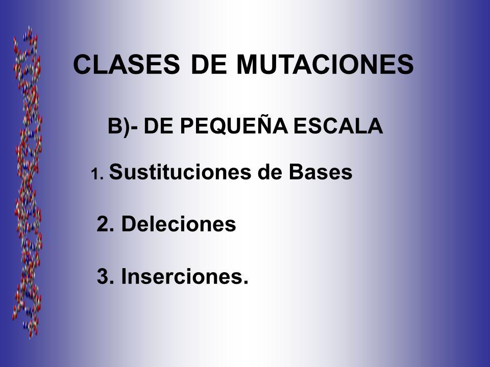 CLASES DE MUTACIONES B)- DE PEQUEÑA ESCALA 2. Deleciones