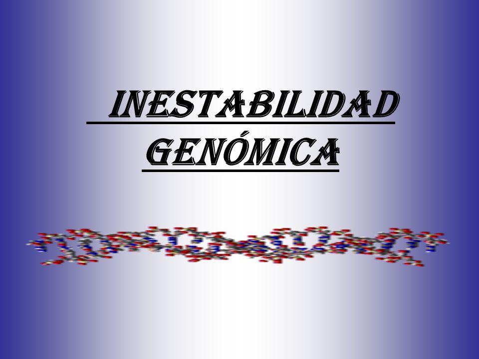 Inestabilidad genómica