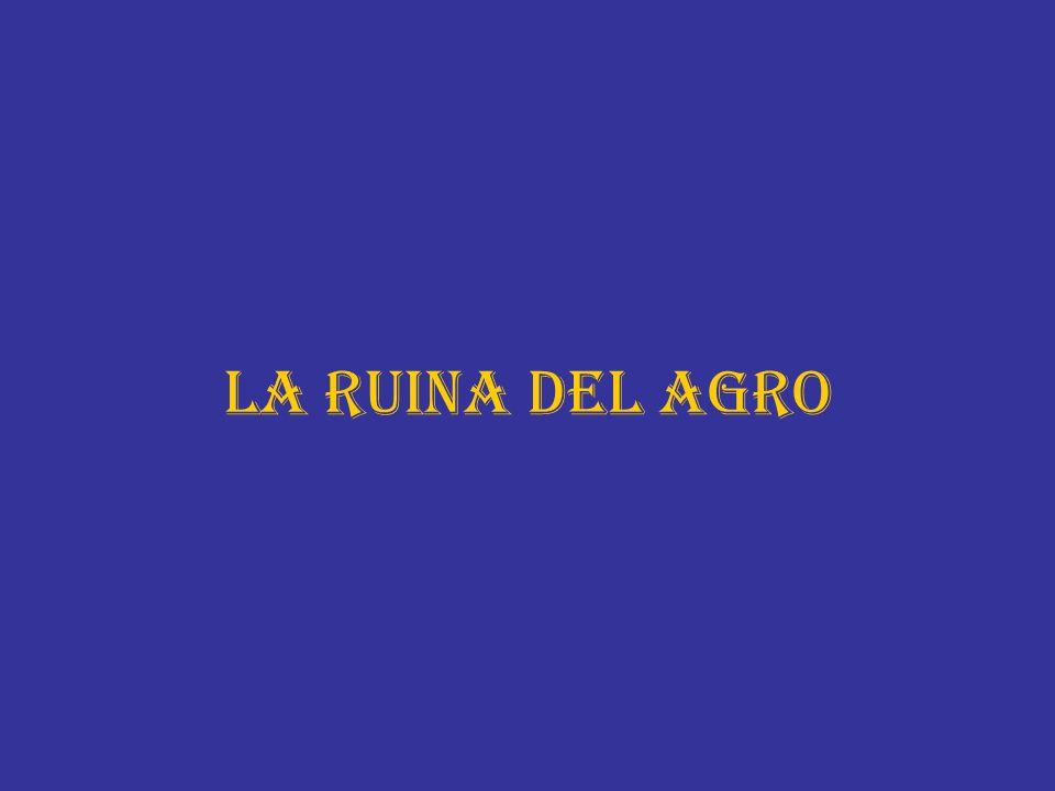 LA RUINA DEL AGRO